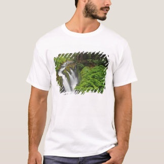 Sol Duc Falls in Olympic National Park in 2 T-Shirt