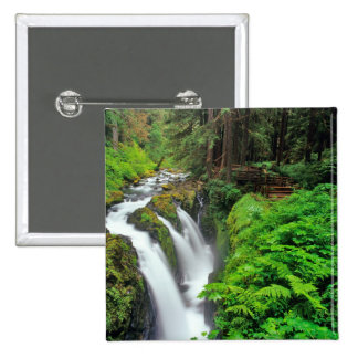 Sol Duc Falls in Olympic National Park in Button