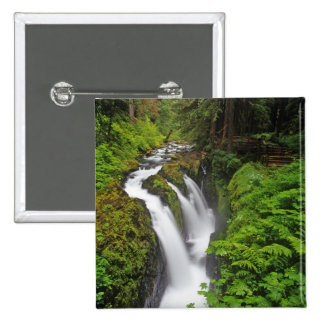 Sol Duc Falls in Olympic National Park in Buttons