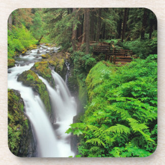 Sol Duc Falls in Olympic National Park in Drink Coasters