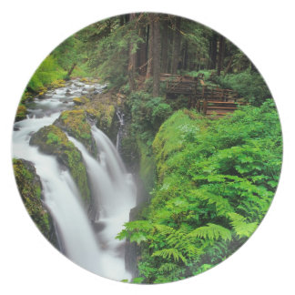 Sol Duc Falls in Olympic National Park in Plate