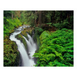 Sol Duc Falls in Olympic National Park in Posters