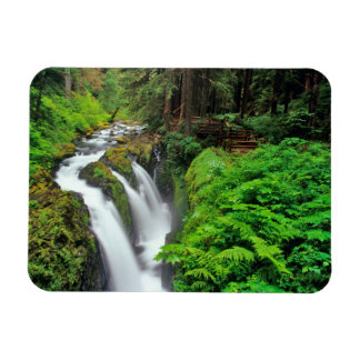 Sol Duc Falls in Olympic National Park in Vinyl Magnet