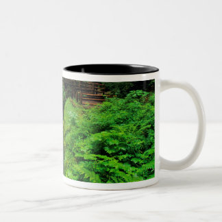 Sol Duc Falls in Olympic National Park in Two-Tone Coffee Mug