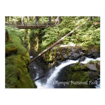 Christmas Themed Sol Duc Falls, Olympic National Park Photo Postcard