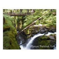 Sol Duc Falls, Olympic National Park Travel Postcard