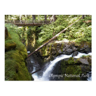 Sol Duc Falls, Olympic National Park Travel Postcard