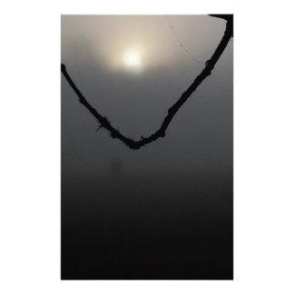 sol en red de la niebla  papeleria