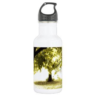 Sol fantasmal del bosque botella de agua