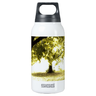 Sol fantasmal del bosque botella isotérmica de agua