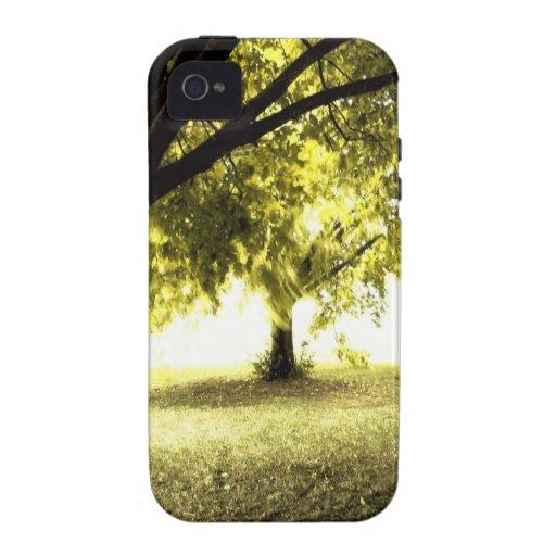 Sol fantasmal del bosque iPhone 4/4S fundas