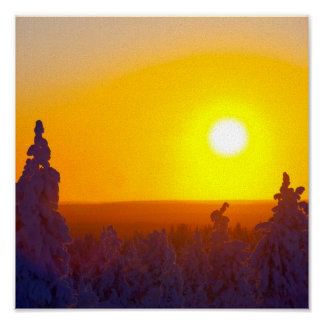 Sol finlandés de la tarde de Laponia Póster