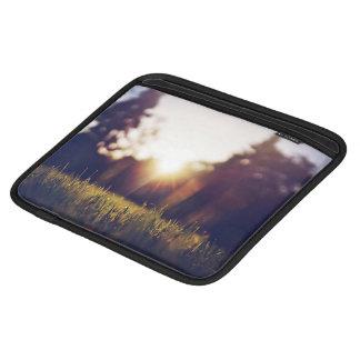 sol glaring en el parque fundas para iPads