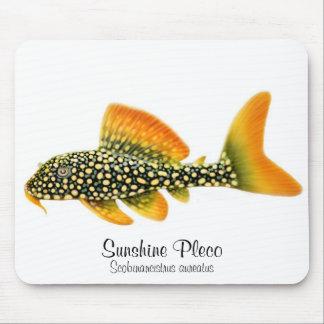 Sol Pleco Mousepad de Goldy