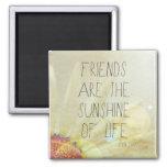 Sol y amistad imán para frigorífico