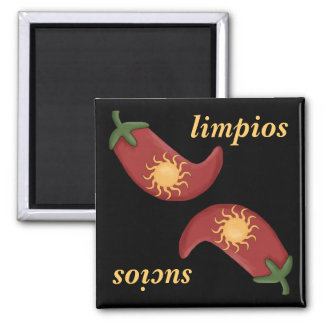 Sol y Chile Hot and Spicy Fun Dishwasher 2 Inch Square Magnet