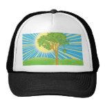 sol y gorra del árbol