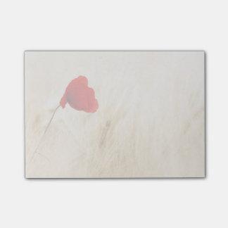 Sola amapola roja en un campo herboso post-it® nota