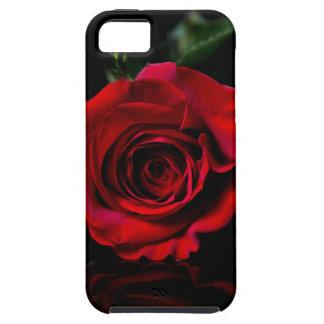 Sola caja de Iphone del rosa rojo iPhone 5 Fundas