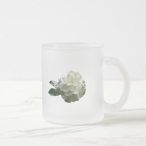 Sola camelia blanca taza