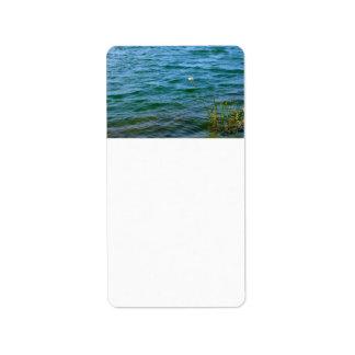 Sola charca de la caña del agua de la flor blanca etiquetas de dirección