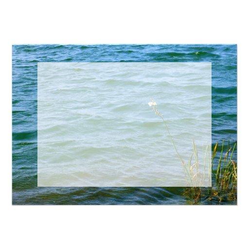 Sola charca de la caña del agua de la flor blanca invitaciones personalizada