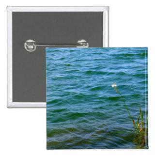 Sola charca de la caña del agua de la flor blanca pin