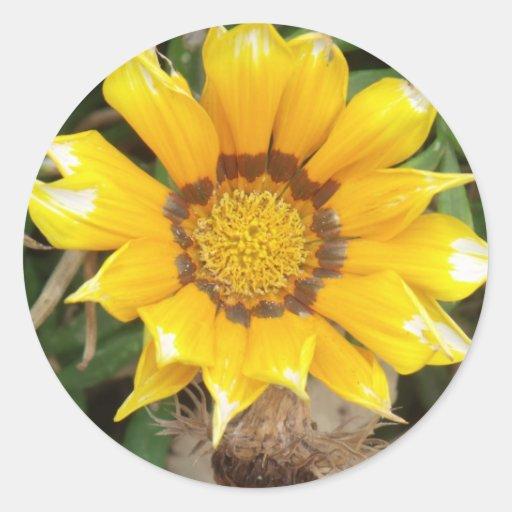 Sola flor amarilla pegatina redonda