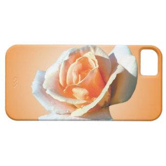 sola flor del rosa amarillo en fondo amarillo funda para iPhone 5 barely there