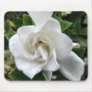 Sola flor Mousepad del Gardenia