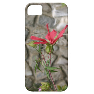 Sola flor roja funda para iPhone 5 barely there