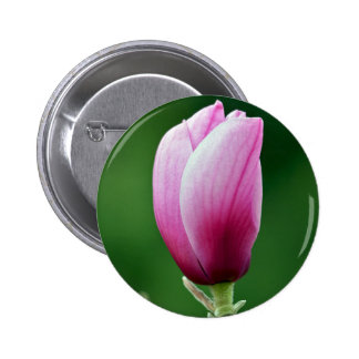 Sola flor rosada de la magnolia chapa redonda 5 cm