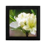Sola flor salvaje blanca cajas de joyas