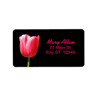 Sola floración elegante del tulipán etiqueta de dirección