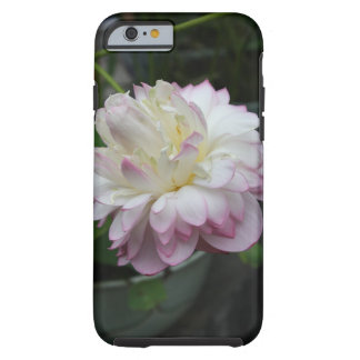 Sola floración rosada de la flor blanca funda para iPhone 6 tough