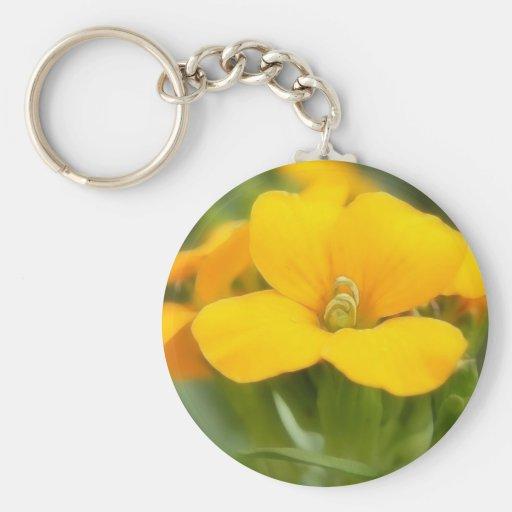 Sola floración - Wallflower Llaveros