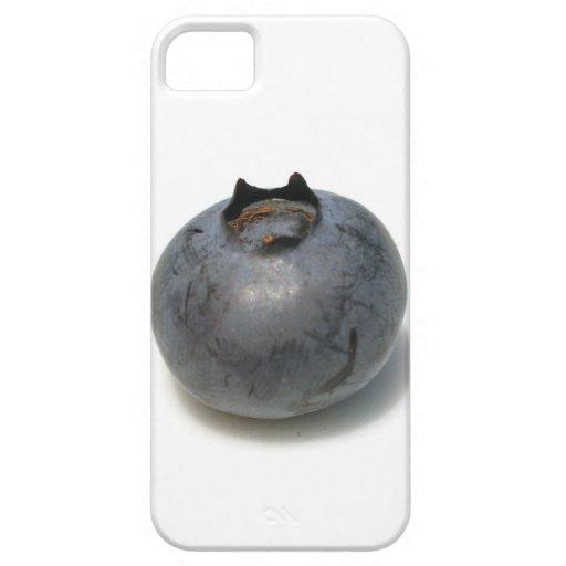 Sola fruta deliciosa del arándano iPhone 5 Case-Mate coberturas