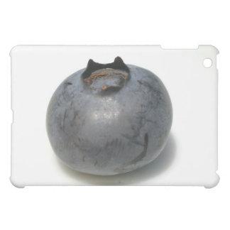 Sola fruta deliciosa del arándano