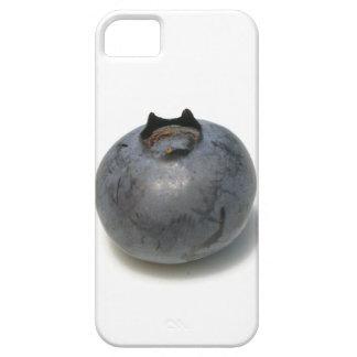 Sola fruta deliciosa del arándano funda para iPhone SE/5/5s