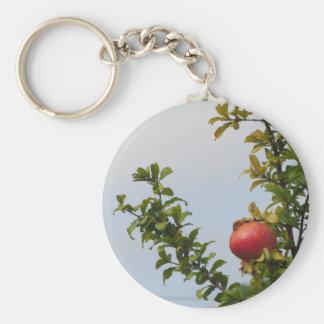 Sola fruta roja de la granada en el árbol en hojas llavero redondo tipo pin