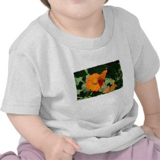 Sola mariposa anaranjada en una sola flor camisetas