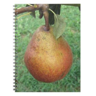 Sola pera roja que cuelga en el árbol libreta espiral