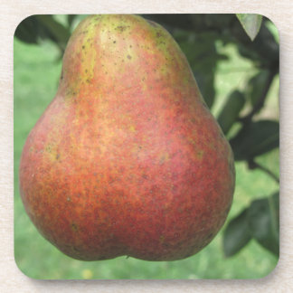 Sola pera roja que cuelga en el árbol posavasos de bebida