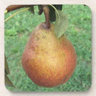 Sola pera roja que cuelga en el árbol posavasos de bebidas