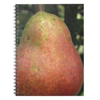 Sola pera roja que cuelga en el árbol spiral notebook