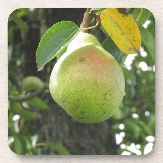 Sola pera verde que cuelga en el árbol posavaso