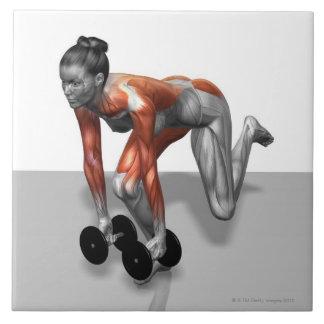 Sola pierna Deadlift de la pesa de gimnasia Azulejo Cuadrado Grande