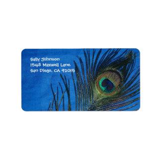 Sola pluma azul del pavo real etiquetas de dirección
