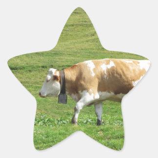 Sola vaca en un pasto alpino pegatina en forma de estrella
