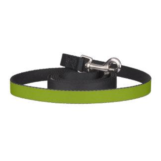 Solamente color sólido verde correa de perro